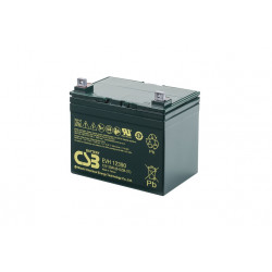 CSB EVH12390 12V 39Ah Deep Cycle VRLA AGM Traction Electric Vehicle Battery