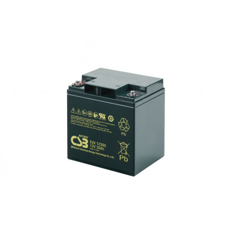 CSB EVX12300 12V 30Ah Deep Cycle VRLA AGM Traction Electric Vehicle Battery
