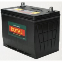 12 Volt 65 AH Semi Sealed Lead Acid Stand-By Storage Battery